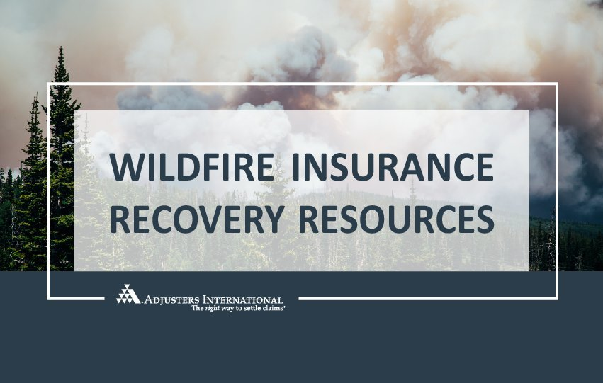 Wildfire Assistance Resources Thumbnail Image
